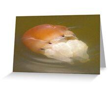 Brown Jellyfish Greeting Card