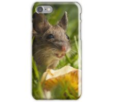 Field Mouse Eating an Apple iPhone Case/Skin