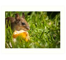 Field Mouse Posing Art Print