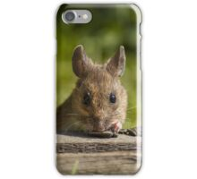 Field Mouse Watching iPhone Case/Skin