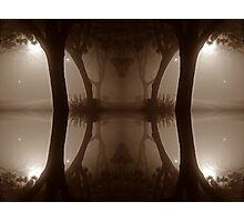 oriental tree reflection Photographic Print