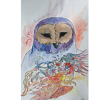 The owl sage Photographic Print