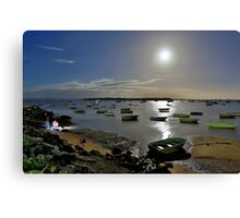 At the Point, Victoria..... Coochi! Canvas Print