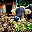 artwork - closeup portrait of a cow by PhotoStock-Isra