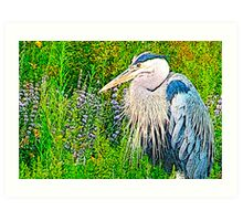 Great Blue Art Print