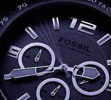 Fossile Grill by foto-mike