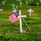 we must never forget by shutterbug261