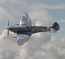 Spitfire - in flight by Pat Speirs