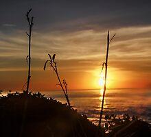 Sunset II by heatherfriedman