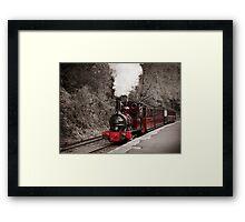 Talyllyn Railway Framed Print