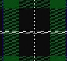 02447 Douglas (alternative threadcount) Clan/Family Tartan Fabric Print Iphone Case by Detnecs2013