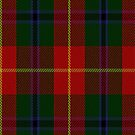 02451 Douglas of Roxburgh Clan/Family Tartan Fabric Print Iphone Case by Detnecs2013