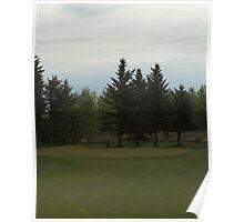Golfing in Alberta Poster