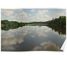 Gator Pond 6 Mile Cypress Slough  Poster