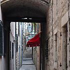 RED AWNING DUBROVNIK by Thomas Barker-Detwiler