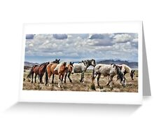 The Wild Band Greeting Card