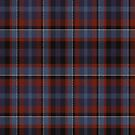02461 Pierce County, Washington District Tartan Fabric Print Iphone Case by Detnecs2013