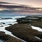 Islands in the Dark - Portsea, Victoria, Australia by Sean Farrow