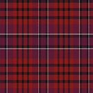 02462 Montgomery County, Pennsylvania District Tartan Fabric Print Iphone Case by Detnecs2013