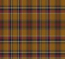 02463 Hidalgo County, Texas E-fficial Fashion Tartan Fabric Print Iphone Case by Detnecs2013