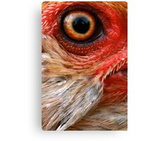 Ever Watchful Canvas Print