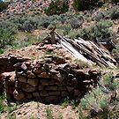 Old Stone Cabin,near Moon Rocks,Reno Nevada USA by Anthony & Nancy  Leake