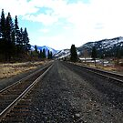 Union Pacific Railroad Tracks,Verdi Nevada USA by Anthony & Nancy  Leake