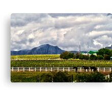 Capetown Farmlands Canvas Print