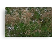 Details of a Tree Canvas Print