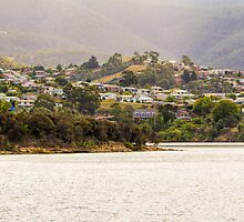 Along the Derwent River, Tasmania by Elaine Teague