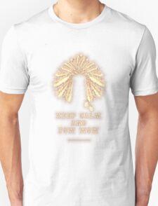POW WOW - 043 T-Shirt