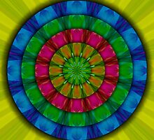 Rainbow Succulent with Raindrops Mandala by haymelter