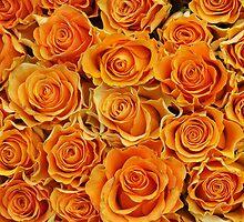 Orange Roses by Ludwig Wagner