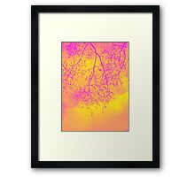 tree outline - graceful winter branches in London Framed Print