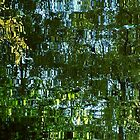 Reflections of trees by ZoeKay