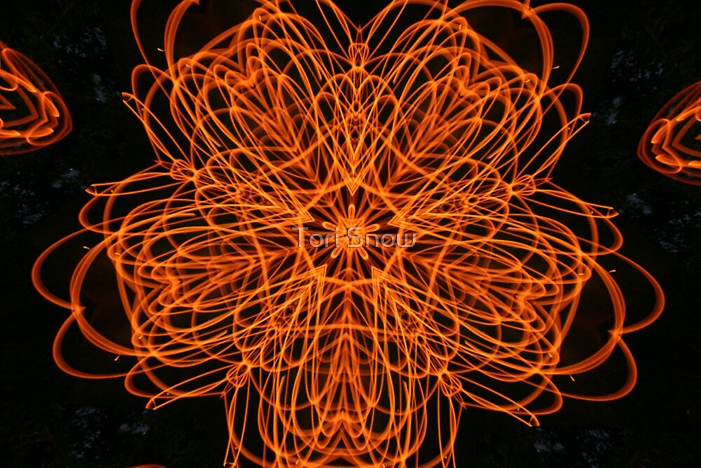 Flame Flower Fractal by Tori Snow
