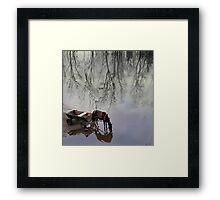 Equine Reflection Framed Print