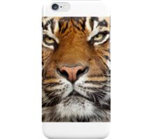 Sumatran Tiger iPhone Case/Skin