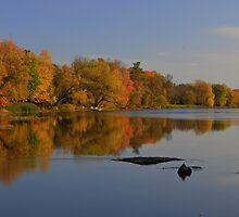 Blakeney, Ontario by LouiseLafleur