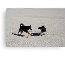 Playin on the Playa,Black Rock Desert,Gerlach Nevada USA Canvas Print