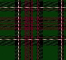 02493 Dryfe Tartan Fabric Print Iphone Case by Detnecs2013