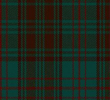 02496 Dublin County District (Fashion) Tartan Fabric Print Iphone Case by Detnecs2013
