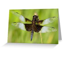 Such A Beauty! Greeting Card