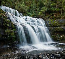 Liffey Falls II by Rosie Appleton