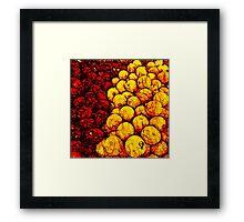 Of apples and oranges Framed Print