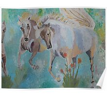 Horses from Camargue 2 Poster