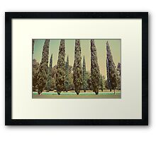 Some of Your Attention Framed Print