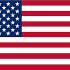American Flag by TilenHrovatic