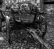 Wooden Wagon Wheels by Andrew Dickman
