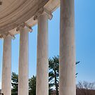 ionic architectural columns by Alexandr Grichenko